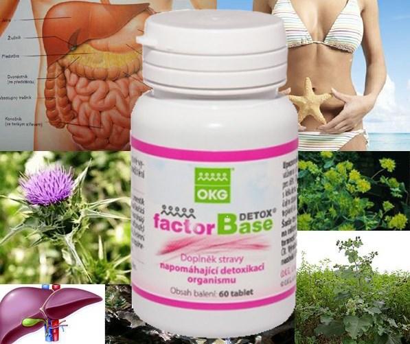 FACTOR BASE Detox (60ks želatinových tobolek)