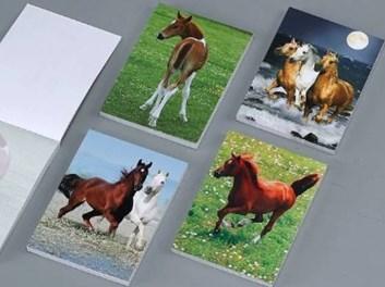 Bloček 8,4*6  40l kočky,koně IMPAP