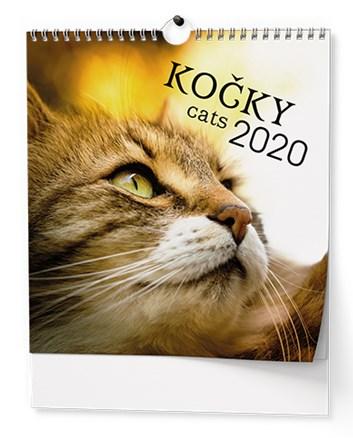 Z.K. Ideál Kočky BNO1 2020 Baloušek