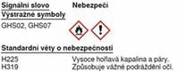 Anti-COVID dezinfekce 5 l