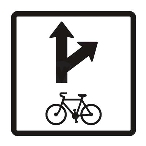 Dopravní značka - Dodatková tabulka -Povolený směr jízdy cyklistů, E12c, 500 x 500mm