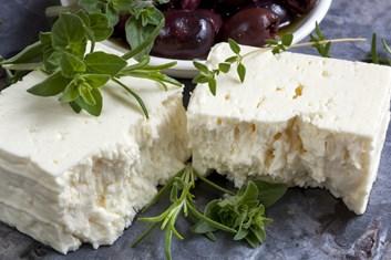 Individuální kurz  na výrobu sýrů, jogurtů, tvarohu a mléčných výrobků.