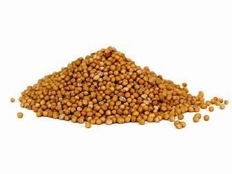 Hořčičné semínko žluté - sareptská hořčice 1kg
