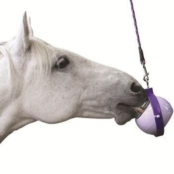 Hračky pro koně