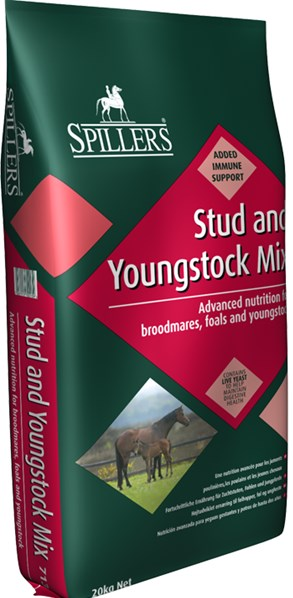 Stud and Youngstock mix