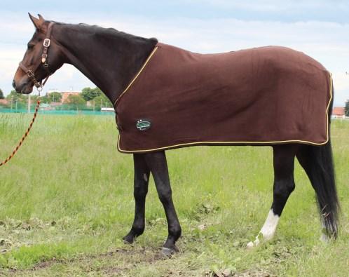 Fleecová deka s ozdobným provazem Kentaur