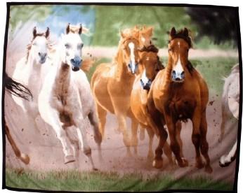 Deka fleecová stádo koní HKM