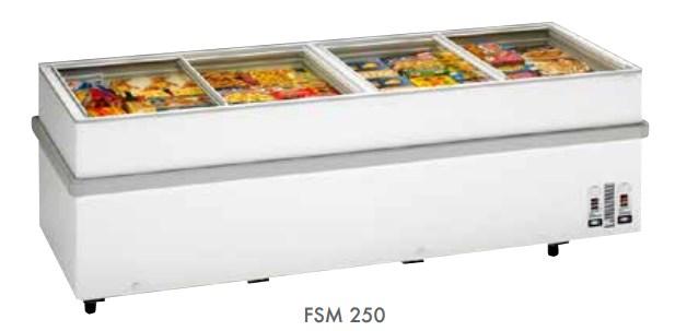 FSM250