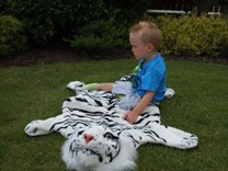 Plyšová předložka - tygr bílý
