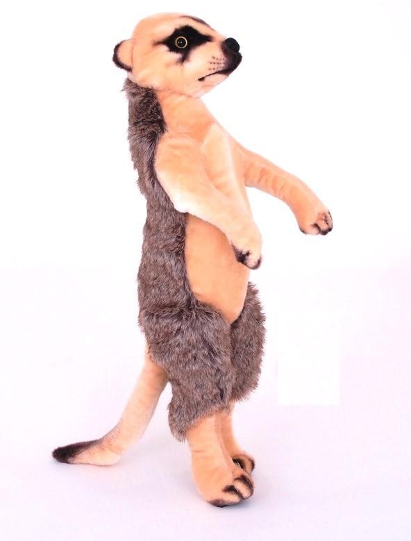 Plyšová surikata
