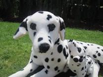 Plyšový dalmatin s mládětem