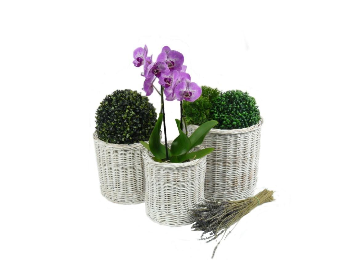 Obaly na květiny Provence