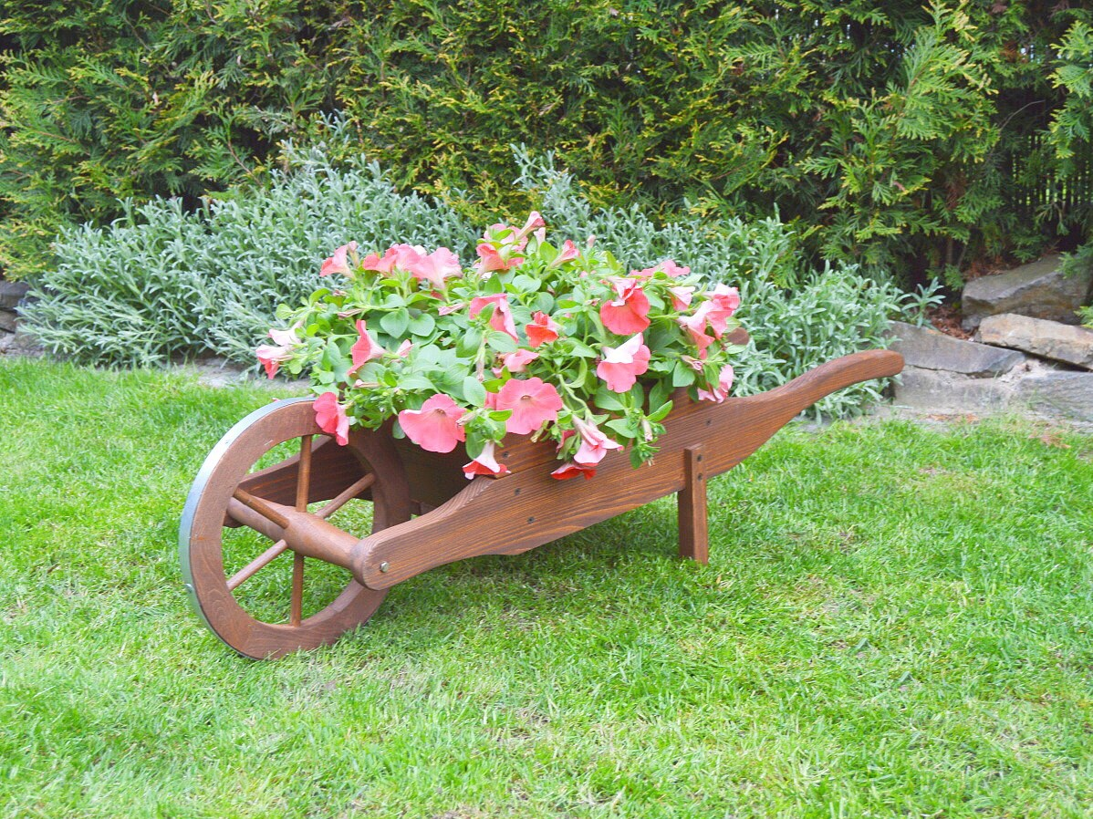 Traka na kv tiny s n t rem d evo a prout for Arboles florales para jardin