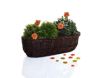 Proutěný truhlík na květiny