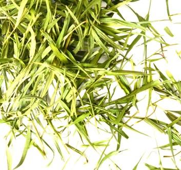 Bambusové listy