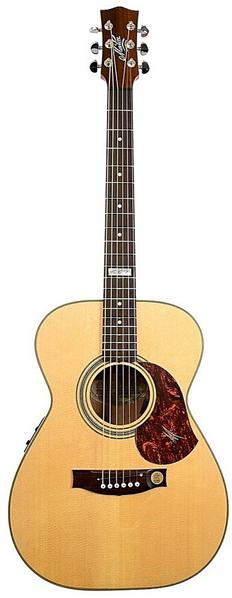 Kytary Maton