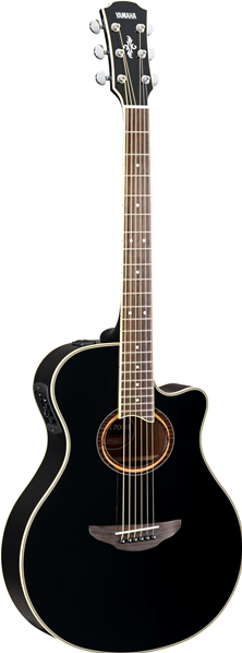 Elektroakustické kytary