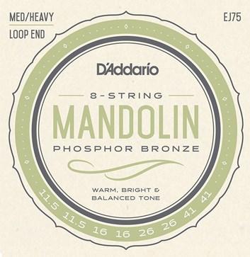 D´Addario mandolin EJ75