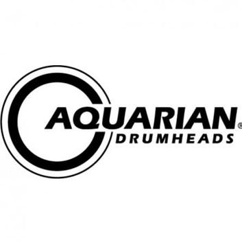 """Aquarian DT-10 10"""""""
