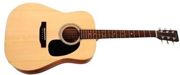 Sigma Guitars DT-ST-WF
