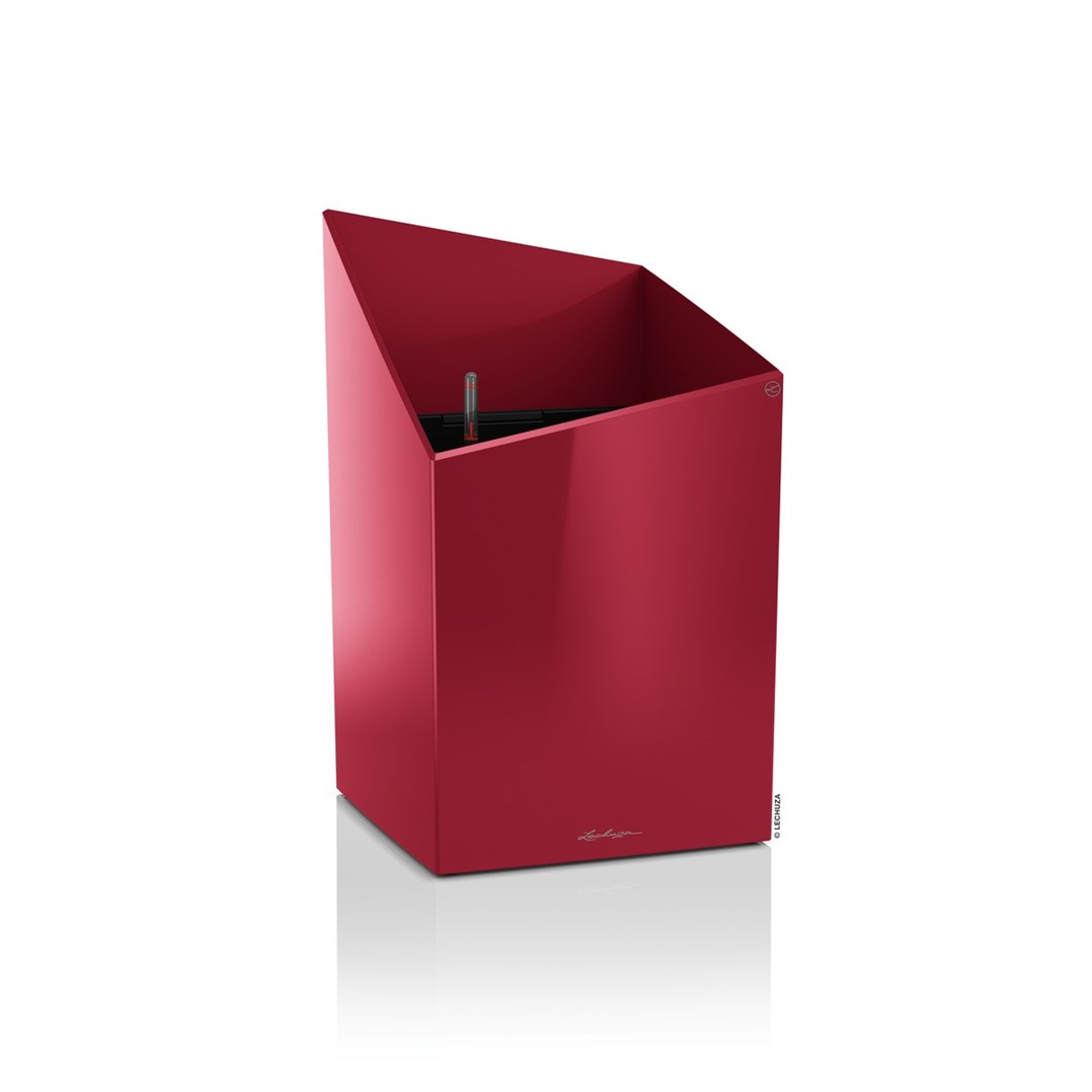 Lechuza Cursivo Premium 30 Scarlet Red High Gloss