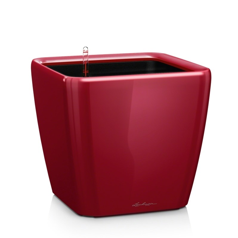 Lechuza Quadro Premium 21 LS Scarlet Red High Gloss