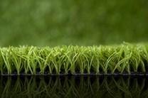 Umělý trávník Ascari colours - zelený