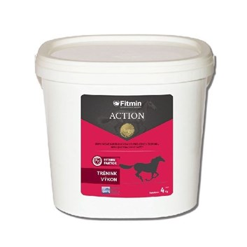 Fitmin Action 4 Kg