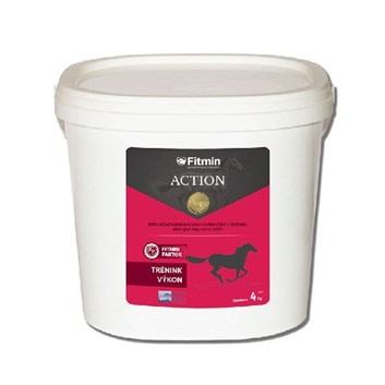 Fitmin Action 2 Kg