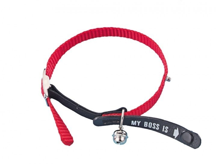 Nobby My Boss is obojek pro kočku s jmenovkou červená barva