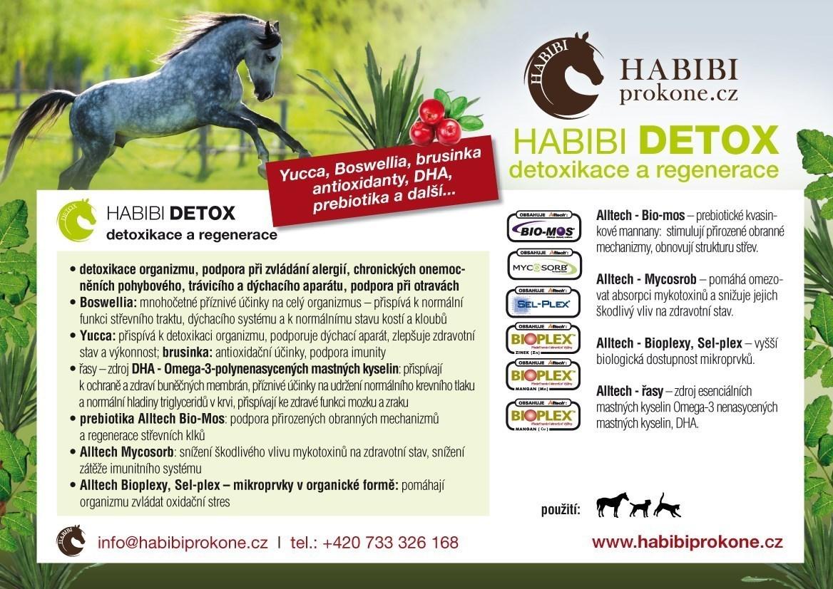 HABIBI - DETOX, 2 Kg - 40 dní