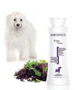 Biogance šampón White Snow 250 ml