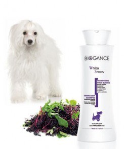 Biogance šampón White Snow 250 ml