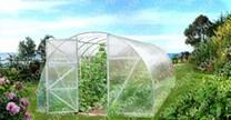 Polykarbonátový skleník Econom 8m ( 8 x 3 m ) - Volya LLC
