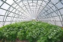 Farmářský profesionální skleník FARMER 21,0 x 7,5 - Volya LLC