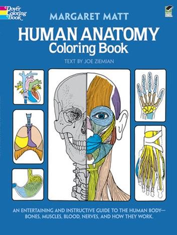 Human Anatomy Colouring Book,  Margaret Matt